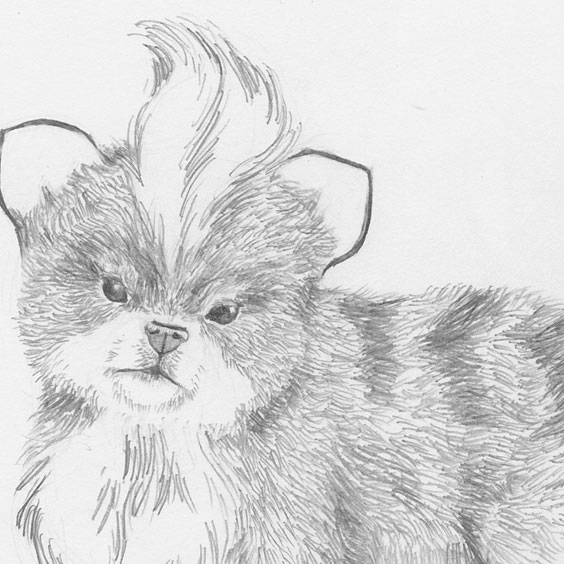 A preliminary drawing of Growlithe